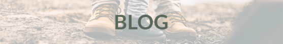 HHRA Blog button
