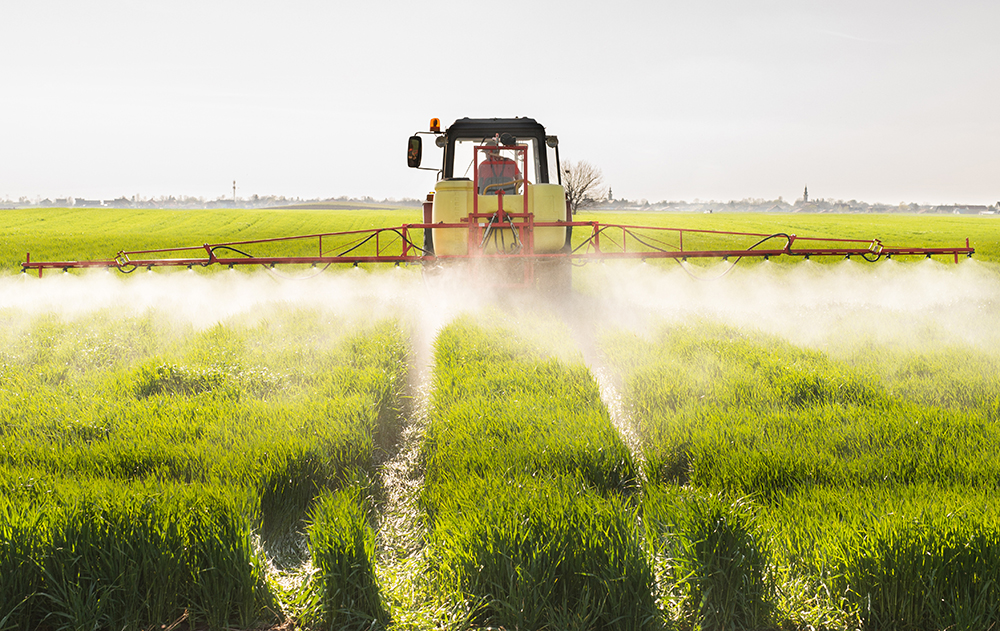 Fungicides Use, a Resistant Pathogen, and Rising Death Rates — CDC Connects the Dots