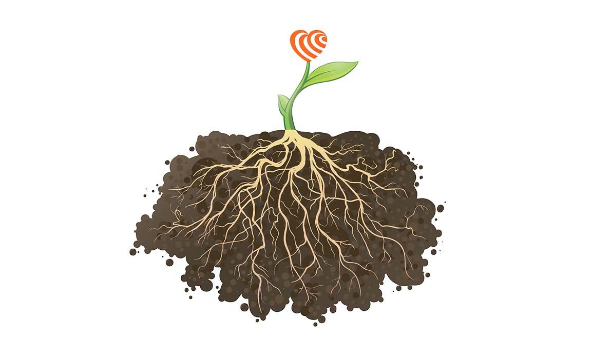 Sinking Deeper Roots: A Virtual Fundraiser
